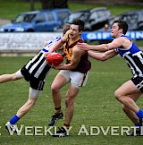 WFL and HDFNL Action